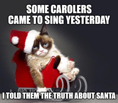 I told the carolers the truth about Santa - Grumpy Christmas Cat meme
