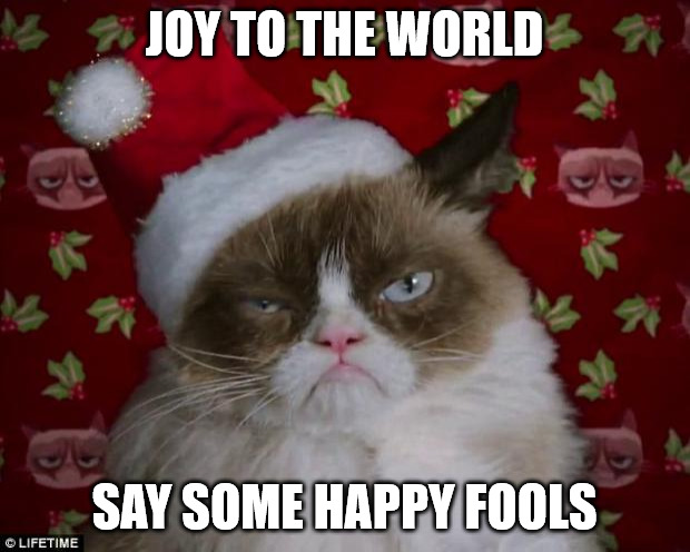 Joy to the world say some happy fools - Grumpy Christmas cat meme
