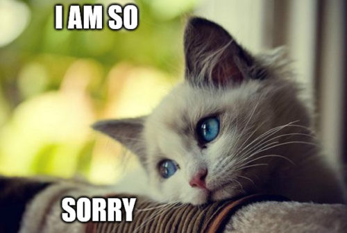 I am so sorry - First World Problems Cat Meme.