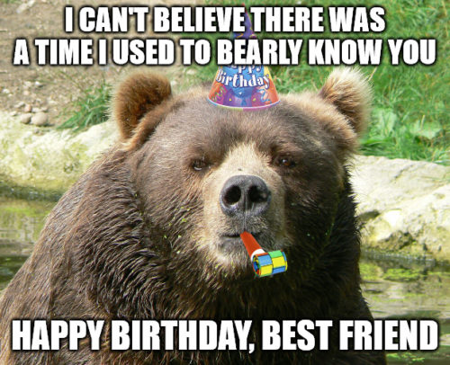 Happy Birthday Best friend Bear meme