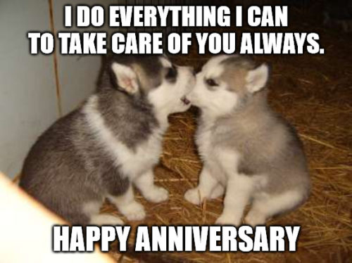 Cute Puppies Anniversary Meme.