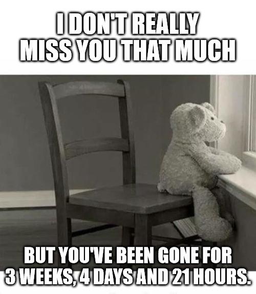 Funny Miss you Meme.