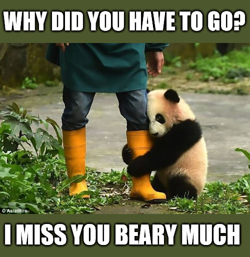 I miss you beary much Meme.
