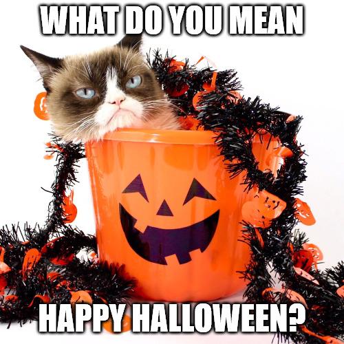 Grumpy Cat Halloween Meme.